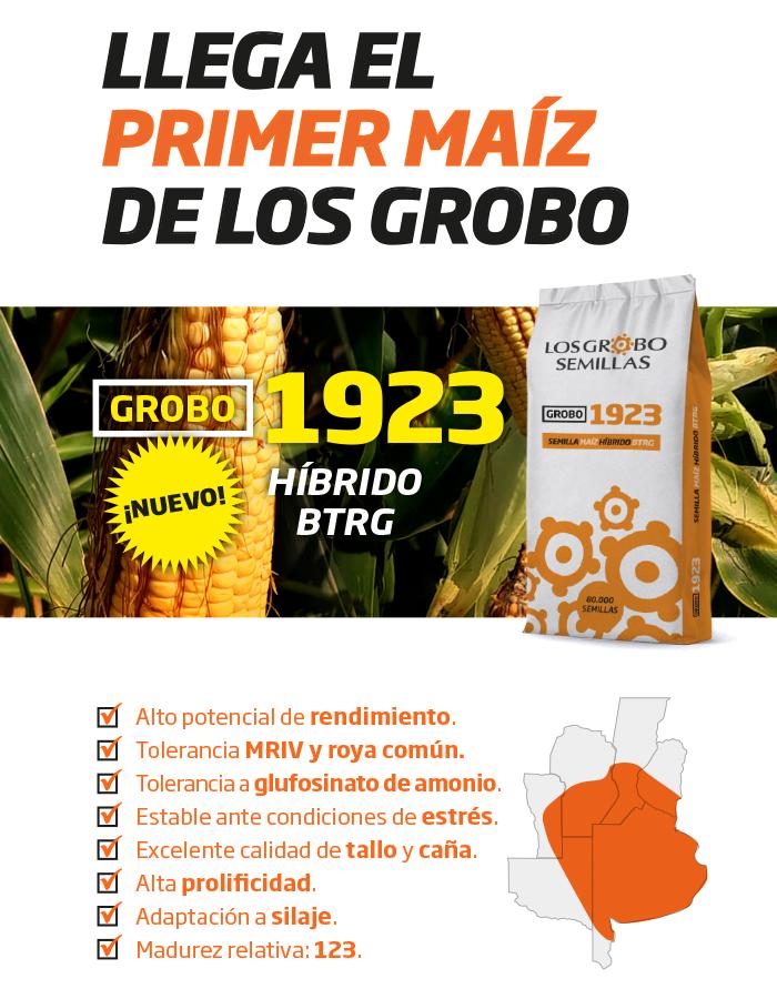 Grobo1923