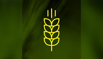 Los Grobo Agropecuaria